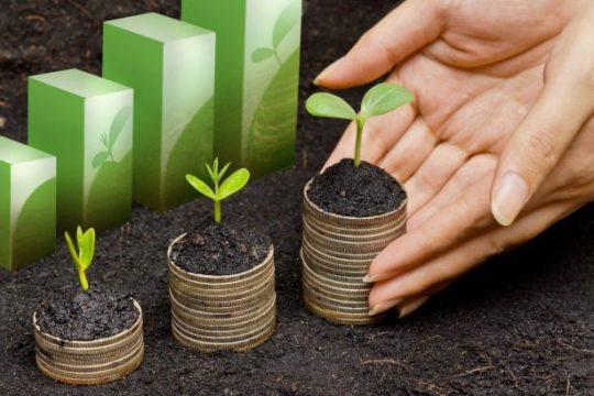 鷹普獲星展銀行批出2億港元3年期之綠色貸款